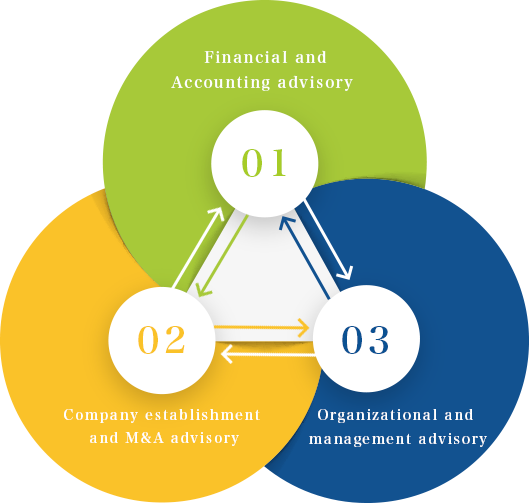01 Financial and Accounting advisory/ 02 Company establishment and M&A advisory/ 03 Organizational and Management advisory